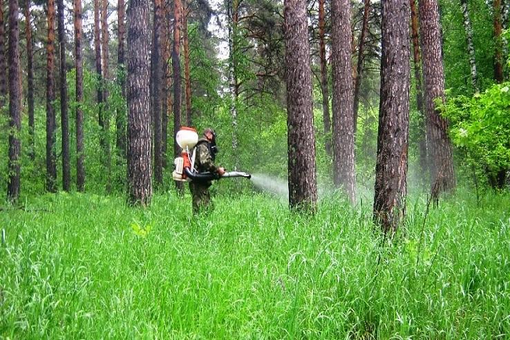 Обработка от клещей лесных массивов в Балаково
